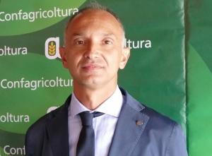 'Insediamento giovani agricoltori, occorre un ulteriore sforzo della Regione'