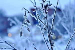Stanotte registrati -25° C al Colle dell'Agnello