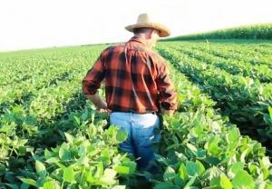 Gli agricoltori pensionati iscritti all'Inps non devono pagare l'IMU sui terreni agricoli