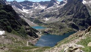 Istituito il registro delle imprese agricole delle Alpi Marittime