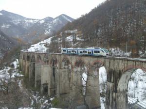 'Sulla Cuneo-Nizza responsabilità sia da parte italiana che francese'