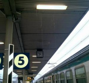 'Alla stazione di Cuneo situazione sempre più critica'