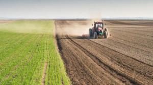 A rischio i contributi per le assicurazioni: gli agricoltori si mobilitano