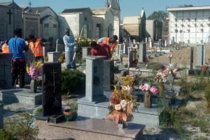 A Busca i richiedenti asilo ripuliscono i cimiteri