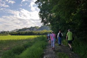 Cammina Clavesana: il 4 agosto una passeggiata tra le vigne