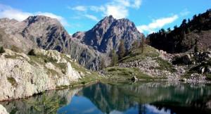 Dagli Stati Uniti al parco del Marguareis per studiare il garofano alpino