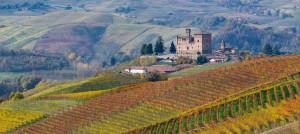 Ad Alba le rappresentanze dei produttori di vino delle province di Alessandria, Asti e Cuneo