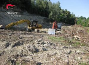 Cercano di abbattere un bosco senza permessi: bloccati dai Forestali