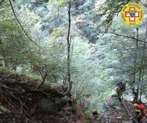 I consigli del Soccorso Alpino per i 'fungaioli'