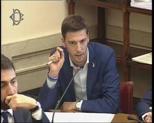 Cuneo, Gastaldi (Lega): 'Ogni sforzo per debellare focolaio tarlo asiatico'