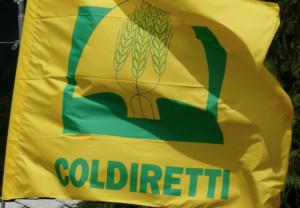 Coldiretti: 'Necessario nuovo intervento della Regione per l'insediamento dei giovani in agricoltura'