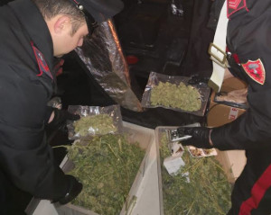 Arrestato dai Carabinieri di Borgo, in casa aveva 2,3 kg di marijuana