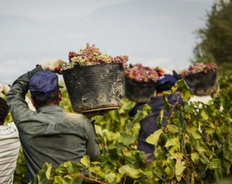 Il lavoro nero si conferma un fenomeno radicato in provincia di Cuneo