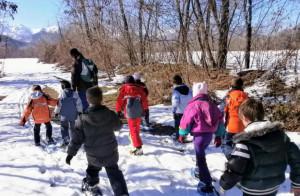 'Inverno al parco': tre mesi di appuntamenti per vivere la natura