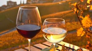 'Come si vende il vino in Cina?': strategie di mercato e casi di successo nel focus di Confindustria