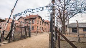 Cinquanta studenti braidesi in visita al campo di concentramento di Auschwitz