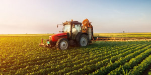I prodotti agroalimentari della Granda tra i più penalizzati dall'embargo russo