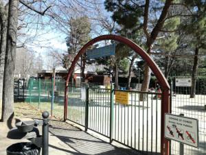 Vandalizzano e danneggiano gli arredi del parco giochi 'Paperino Club', denunciati sei giovanissimi
