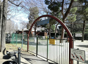 Il Comune di Cuneo chiederà i danni ai vandali del Paperino Club