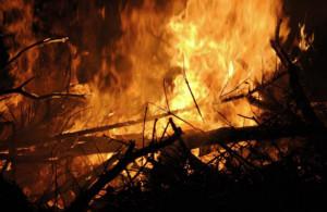 Tentato incendio boschivo a San Damiano Macra: arrestata una donna di Dronero