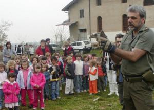 La raccolta di animali imbalsamati della Provincia intitolata a Maurizio Cillario