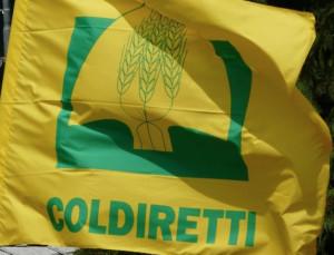 Coldiretti insieme alla LILT: domani al mercato Campagna Amica di Cuneo l'olio extravergine per la ricerca