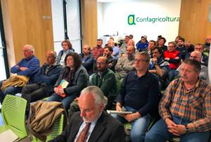 Sicurezza negli allevamenti avicoli: Confagricoltura rivolge una richiesta alla Regione