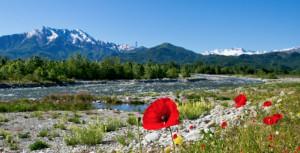 Alla scoperta della riserva della Madonnina con il Parco fluviale Gesso e Stura