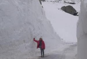 Iniziati i lavori di rimozione della neve sulla strada del colle Fauniera (FOTO)