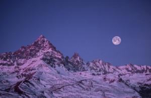'Le Alpi tra animali e paesaggi': fotografie di Paolo Masteghin in mostra a Revello