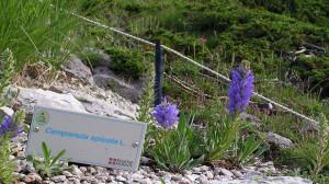 Botanici francesi e valdostani in visita ai giardini delle Marittime