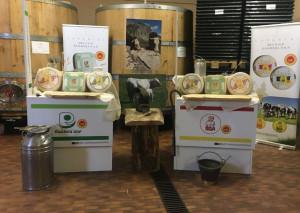 Bra e Raschera tra vini e colline: successo per la degustazione alla 'Tenuta Arnulfo Costa di Bussia' di Monforte