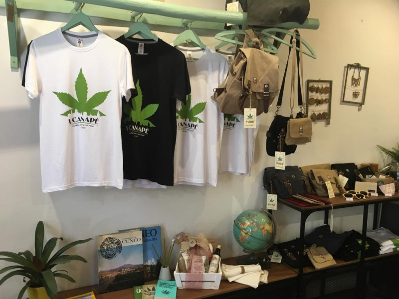 La Cassazione: 'Vendere derivati della cannabis sativa è illegale'