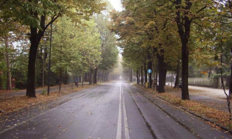 Niente area pedonale in viale degli Angeli nel fine settimana dell'Illuminata