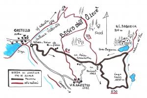 Una breve escursione con le ciastre, nel Bosco dell'Alevé