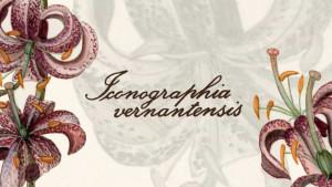 Vernante, una mostra per celebrare i quarant'anni della Riserva del Bosco e dei laghi di Palanfrè