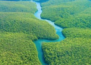 'Congo e Amazzonia: due polmoni dell'umanità': una mostra alla Certosa di Pesio