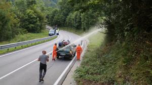 Il Parco delle Alpi Marittime impegnato nella 'lotta biologica' alla piralide del bosso