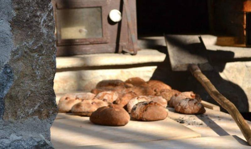 L'Ecomuseo Terra del Castelmagno a Cheese con 'Ecomusei del Gusto'