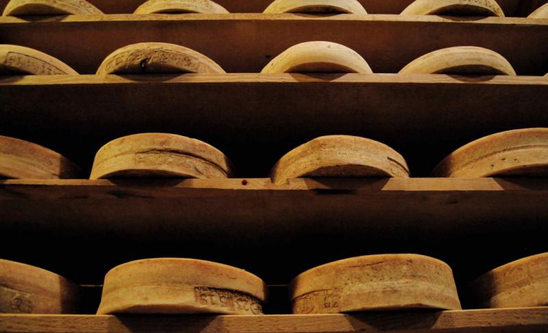 Tutti i presìdi Slow Food al 'debutto' a Cheese 2019