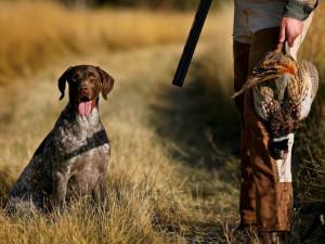 Sabato 21 settembre si apre la nuova stagione di caccia