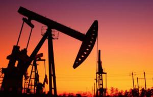 Coldiretti Piemonte: 'Aumenti petrolio, l'agroalimentare ne paga le spese'