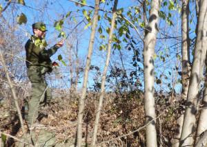 Martedì primo ottobre riapre lo Sportello Forestale del Parco del Monviso