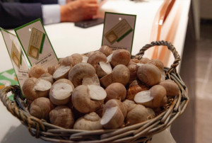 'Sotto il segno della lumaca': un menu speciale per la Fiera Fredda nei ristoranti di Borgo e valli