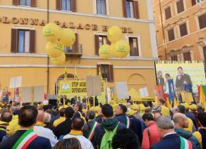 'In Piemonte circa 1.200 incidenti l'anno causati dagli animali selvatici'