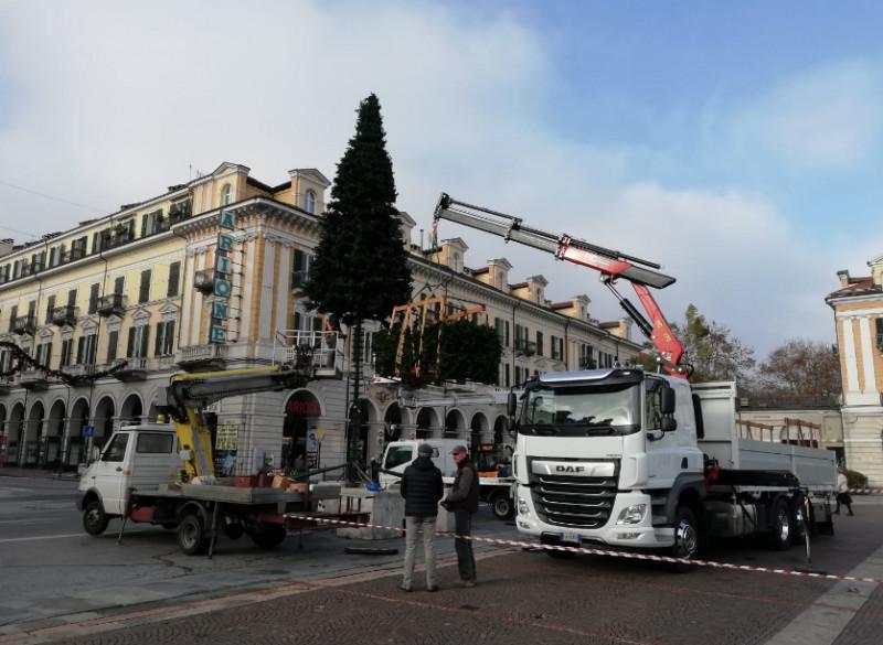 Cuneo, iniziato l'allestimento del tradizionale albero di Natale in piazza Galimberti