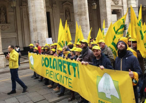 Migliaia di agricoltori a Torino per la manifestazione 'Bôgia Piemunt'