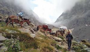 A Sant'Anna di Valdieri la 'prima' del cortometraggio 'A dorso di mulo'