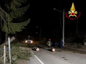 Vento forte a Montoso: abbattuti alberi e pali