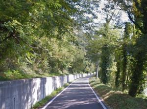 Intervento di messa in sicurezza sulla provinciale 303 tra Ceva e Roascio